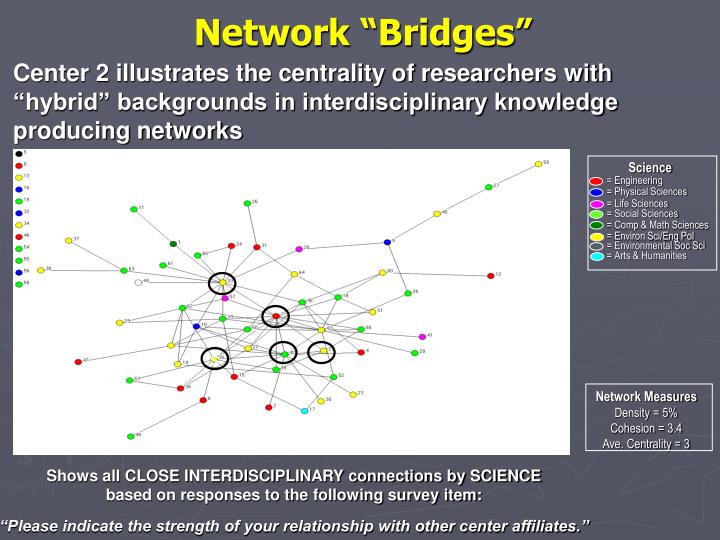 "Network ""Bridges"""