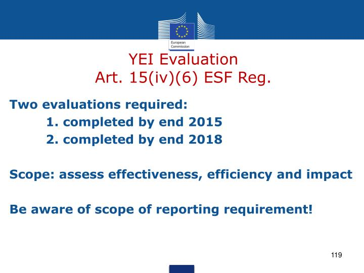 YEI Evaluation