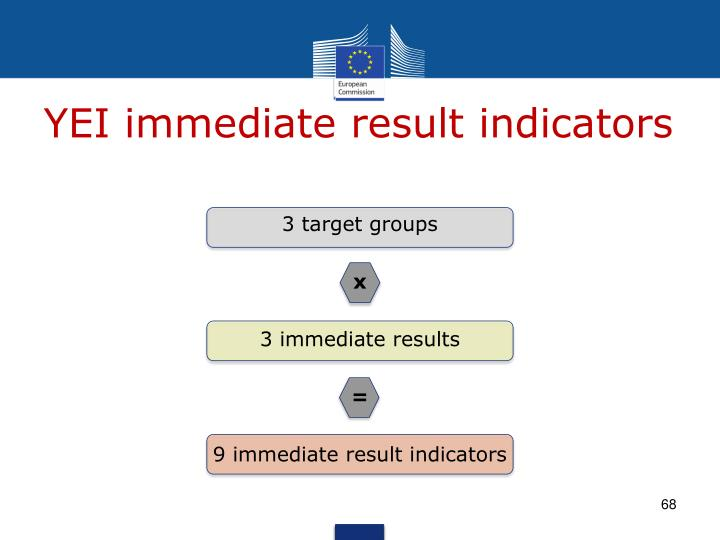 YEI immediate result indicators