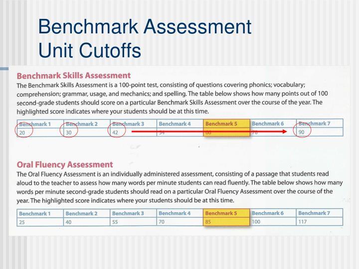 Benchmark Assessment