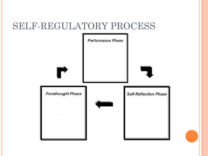 SELF-REGULATORY PROCESS
