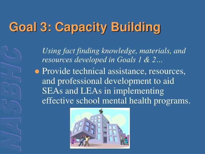 Goal 3: Capacity Building
