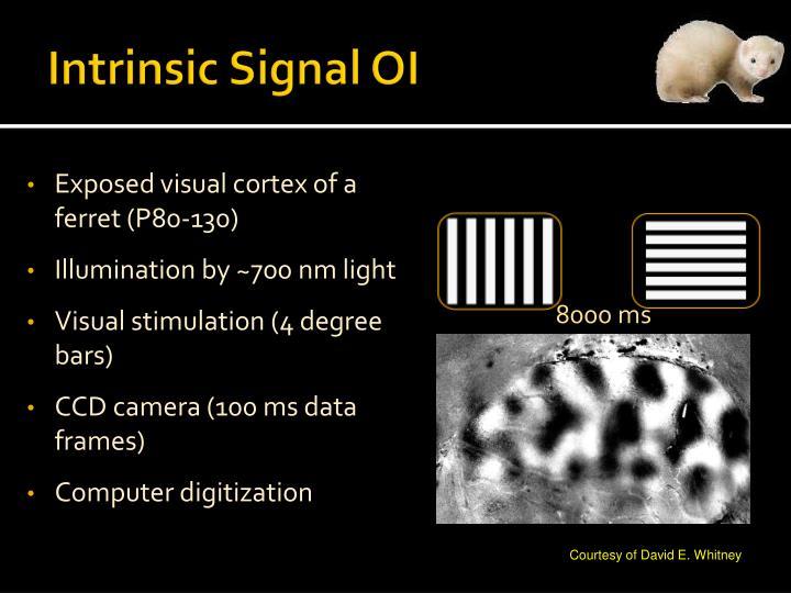 Intrinsic Signal OI