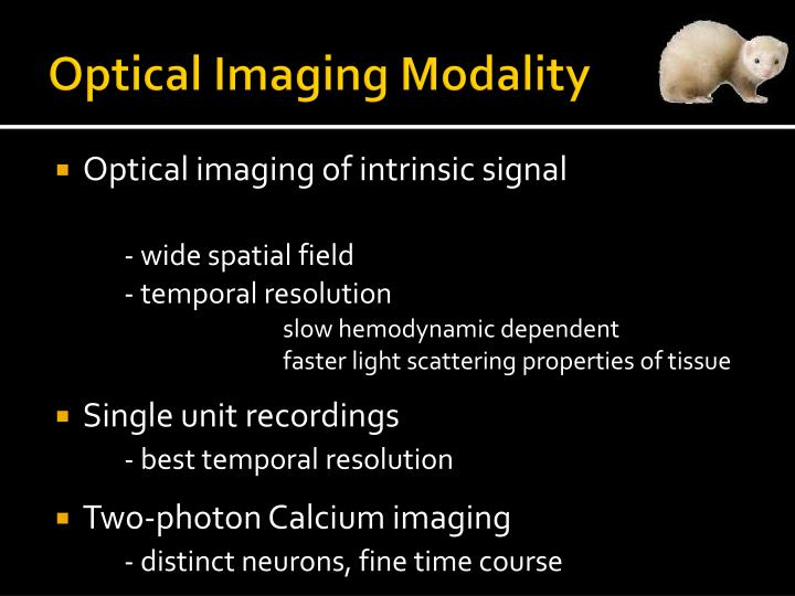 Optical Imaging Modality