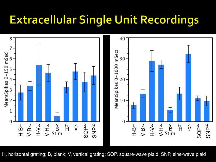 Extracellular Single Unit Recordings