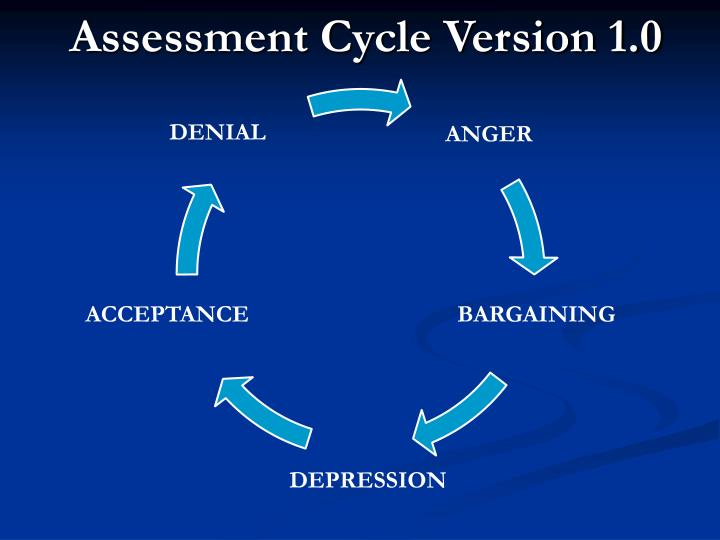 Assessment Cycle Version 1.0