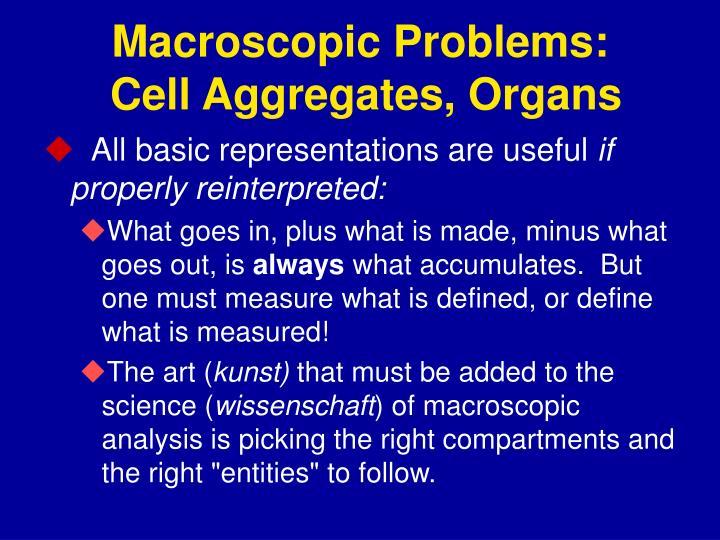 Macroscopic Problems: