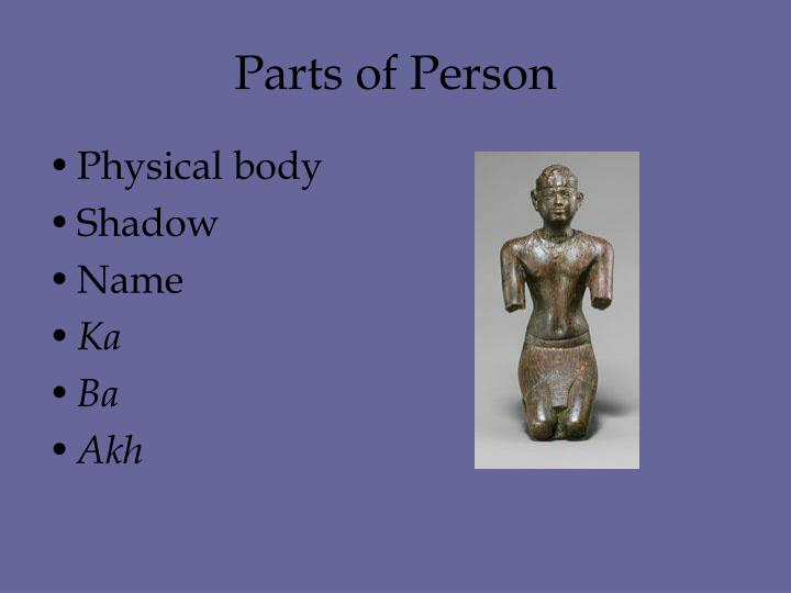 Parts of Person