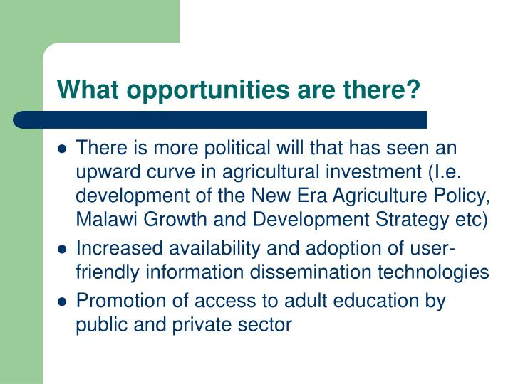 What opportunities are there?