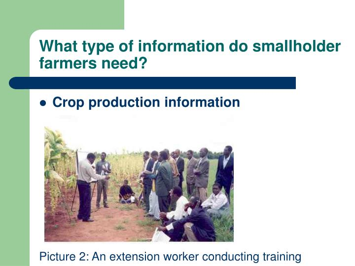 What type of information do smallholder farmers need?