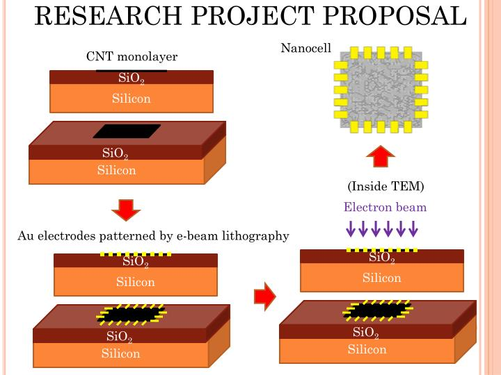 RESEARCH PROJECT PROPOSAL