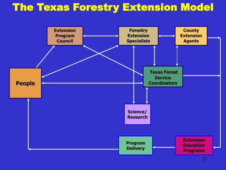 The Texas Forestry Extension Model
