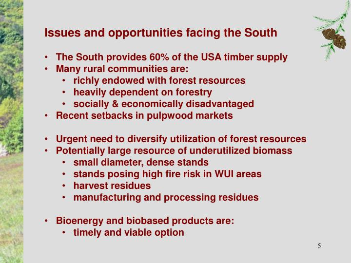 Issues and opportunities facing the South
