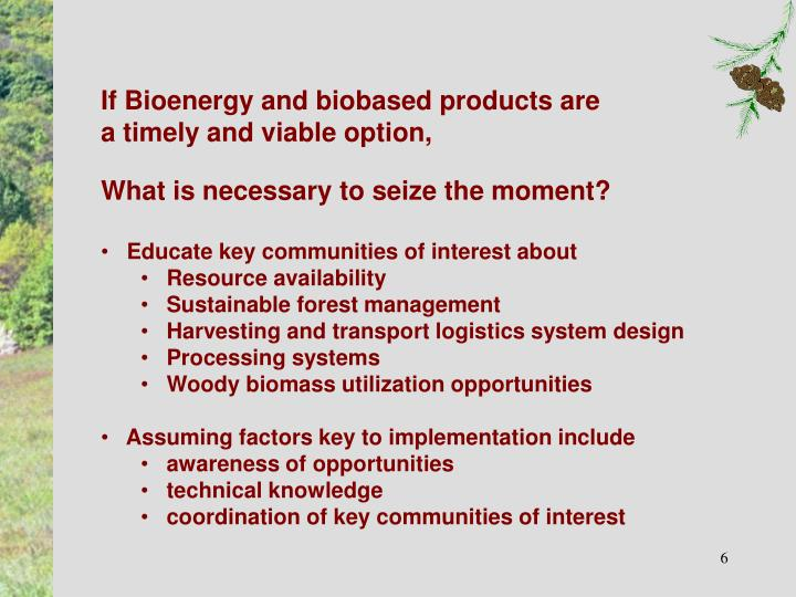 If Bioenergy and biobased products are