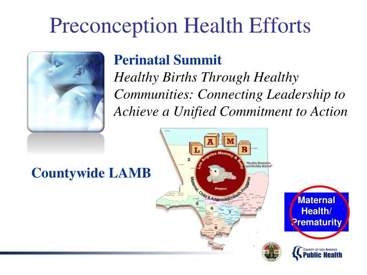 Perinatal Summit
