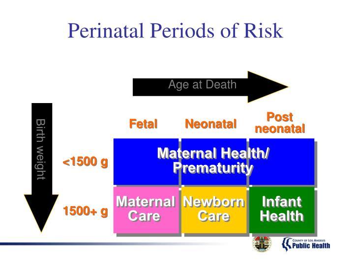 Perinatal Periods of Risk