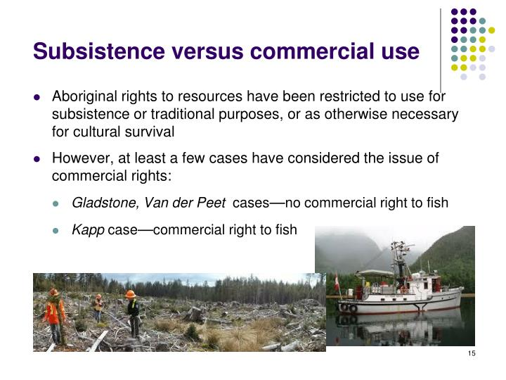 Subsistence versus commercial use