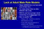 lack of adult male role models
