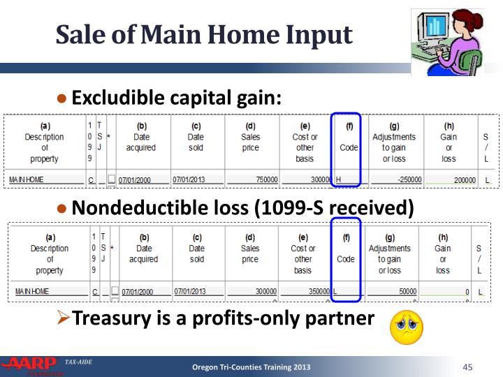 Sale of Main Home Input