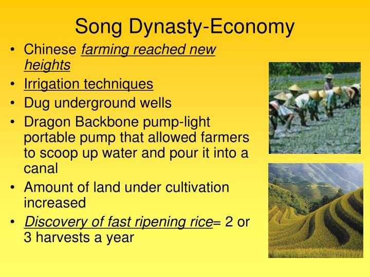 Song Dynasty-Economy