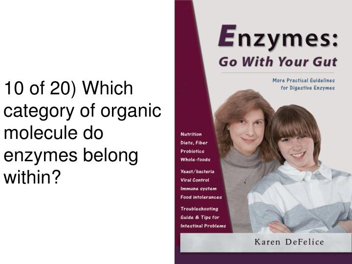 10 of 20) Which category of organic molecule do enzymes belong within?