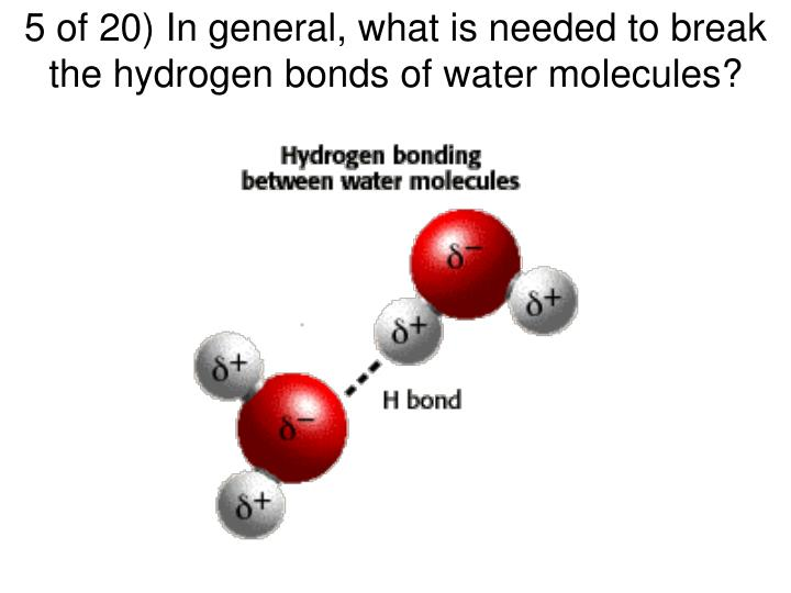 5 of 20) In general, what is needed to break the hydrogen bonds of water molecules?