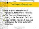 the forestry department