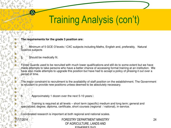 Training Analysis (con't)