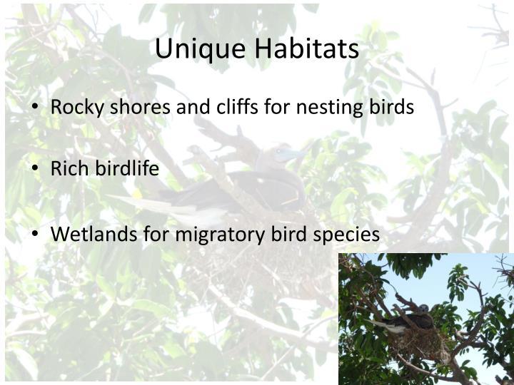 Unique Habitats