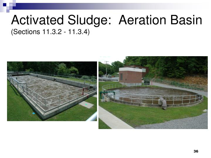 Activated Sludge:  Aeration Basin