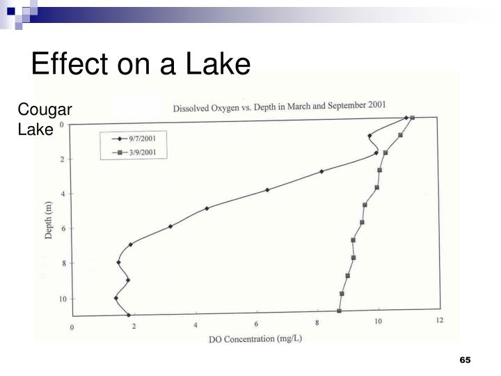 Effect on a Lake
