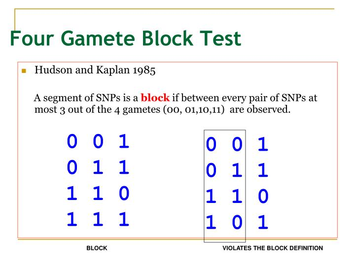 Four Gamete Block Test