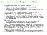 how do we create haplotype blocks
