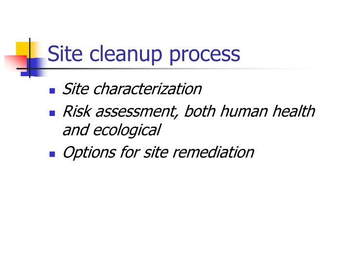 Site cleanup process
