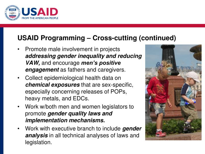 USAID Programming – Cross-cutting (continued)