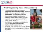usaid programming cross cutting continued