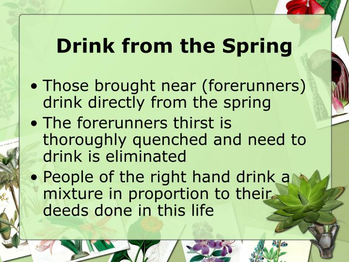 Drink from the Spring