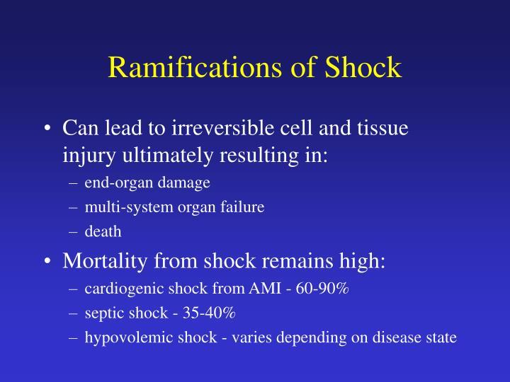 Ramifications of Shock