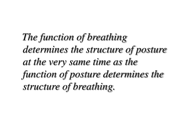 The function of breathing determines the structure of posture at the very same time as the function of posture determines the structure of breathing.