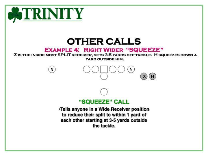 OTHER CALLS