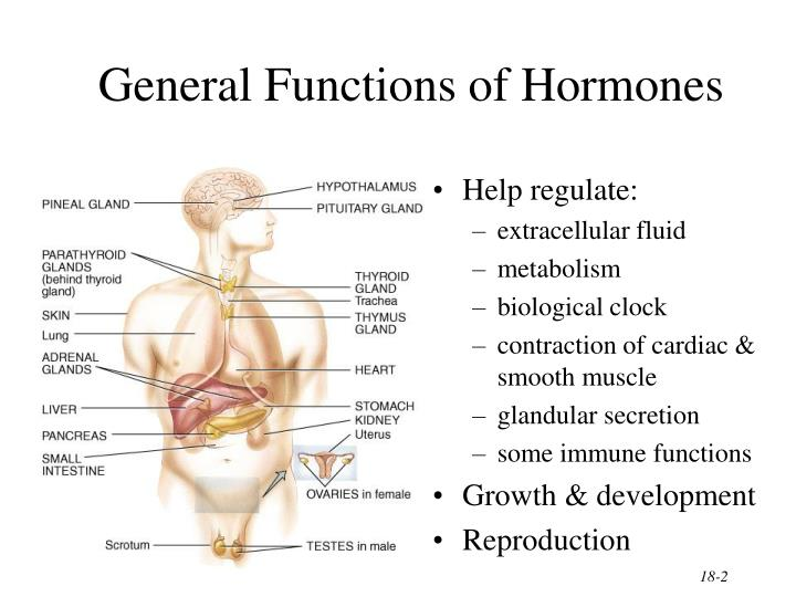 General Functions of Hormones