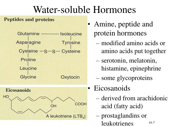 Water-soluble Hormones