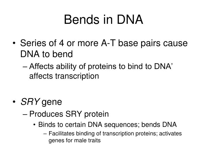 Bends in DNA