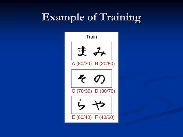 Example of Training