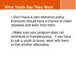 what youth say they want4