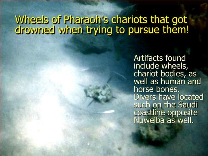 Wheels of Pharaoh