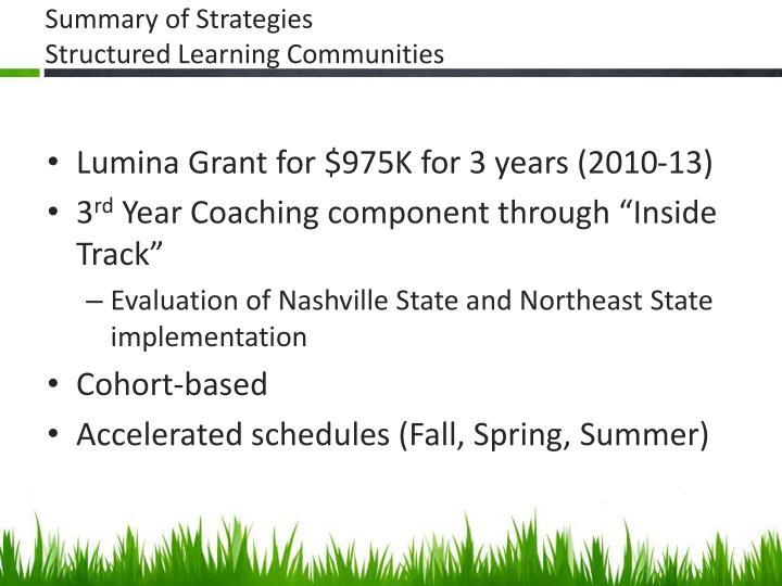 Summary of Strategies