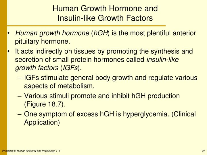 Human Growth Hormone and Insulin-like Growth Factors