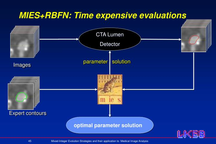 MIES+RBFN: Time expensive evaluations