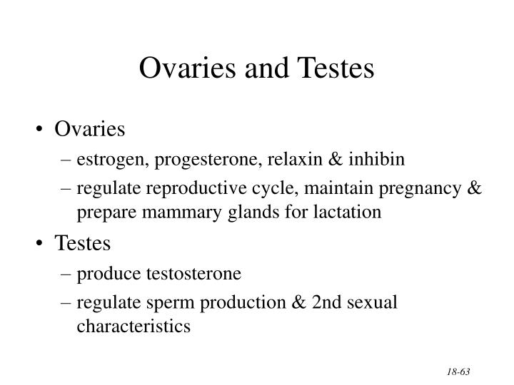 Ovaries and Testes